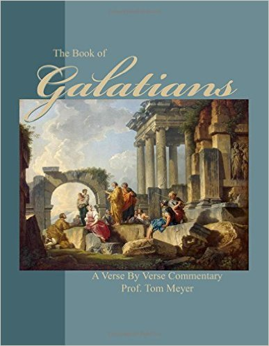 the book of galatians: a verse by verse commentary by professor tom meyer