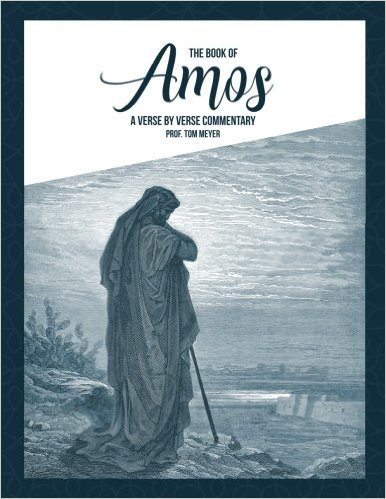 the book of amos: a verse by verse commentary by professor tom meyer