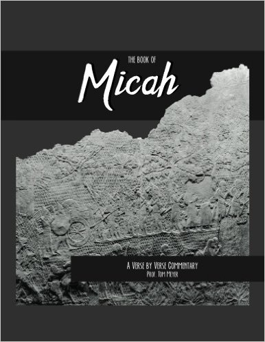 the book of micah: a verse by verse commentary by professor tom meyer