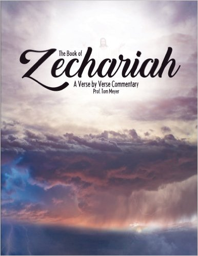 the book of zechariah: a verse by verse commentary by professor tom meyer