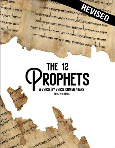 the twelve prophets revised: a verse by verse commentary by professor tom meyer