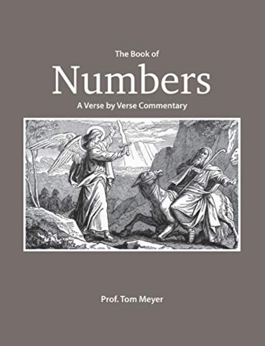 The Book of Numbers: A Verse by Verse Commentary