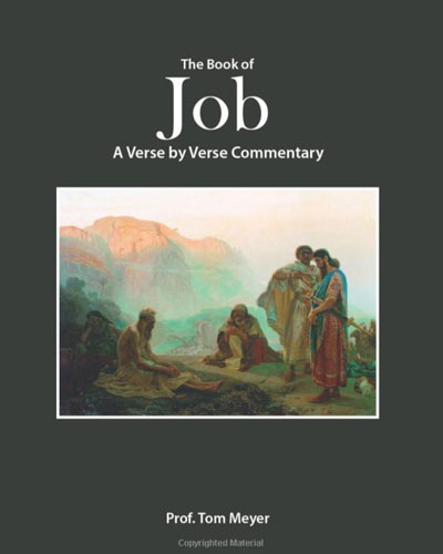 The book of Job: A verse by verse commentary